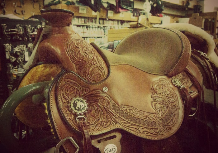 saddle-store-rogers-life-in-minnesota-blog-horseback-riding-gifts-idea-2014.