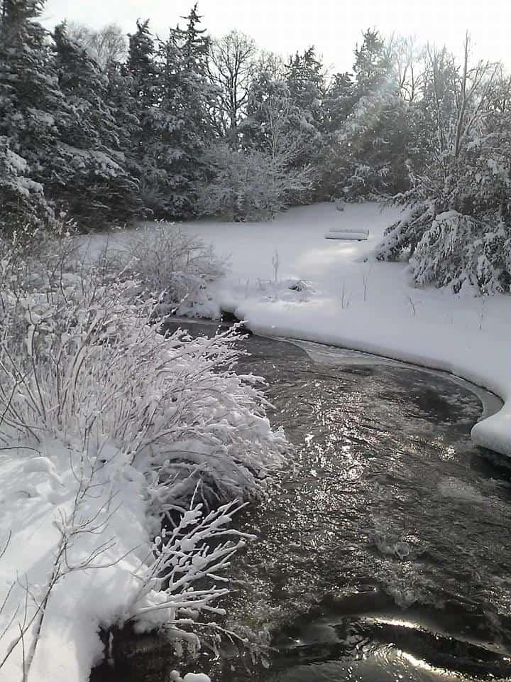 Beautiful Winter Scene Sent In By: Anna Kieke 12/22/2014