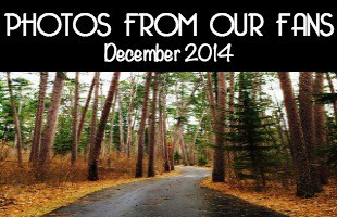 Minnesota Photos December 2014