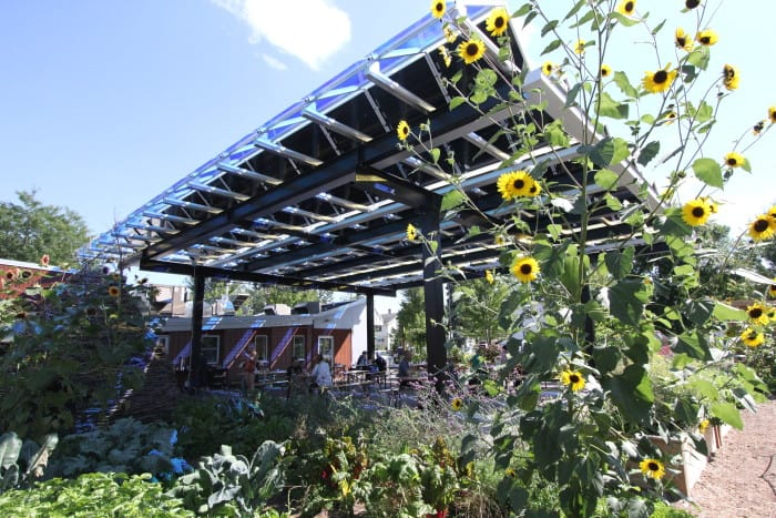Solar power diner cafe food fresh local grown best