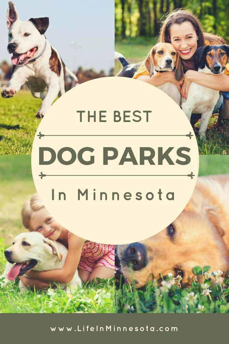 Pinterest Minnesota Dog Parks