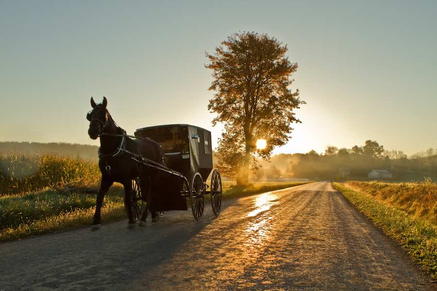 Amish horse and buggy at sunset