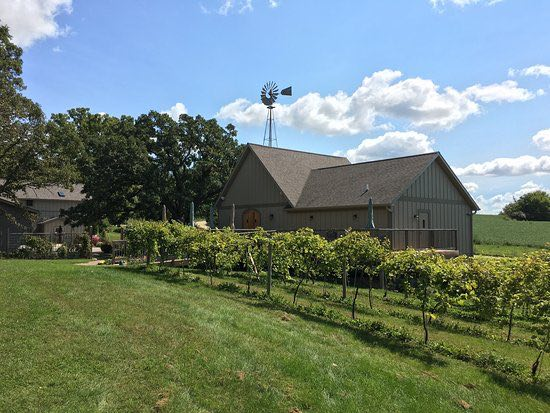 Things To Do In Rochester MN - Salem Glen Winery