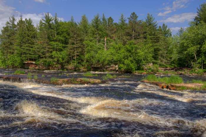 Fast-moving river along pine tree shorline.