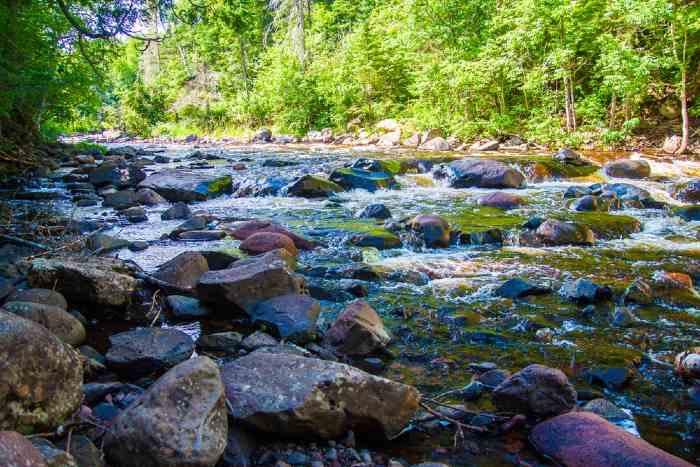 Rock-filled river and shoreline.