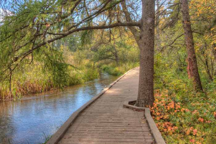 Wooden walkway by river in park.