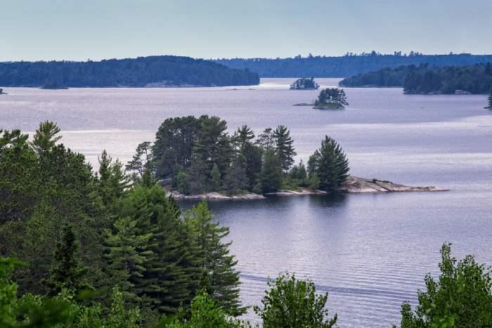 Shoreline of lake in MN