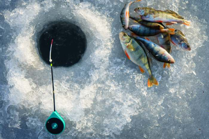 Ice fishing pole and fish on frozen lake