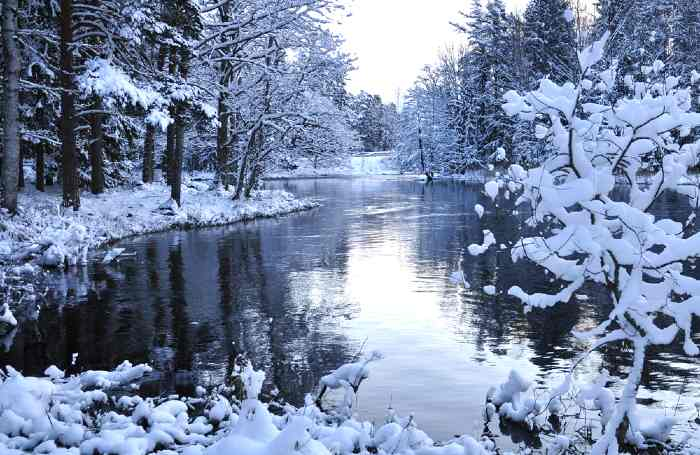 Lake in winter with snow