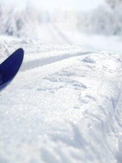 Skiing in fresh snow