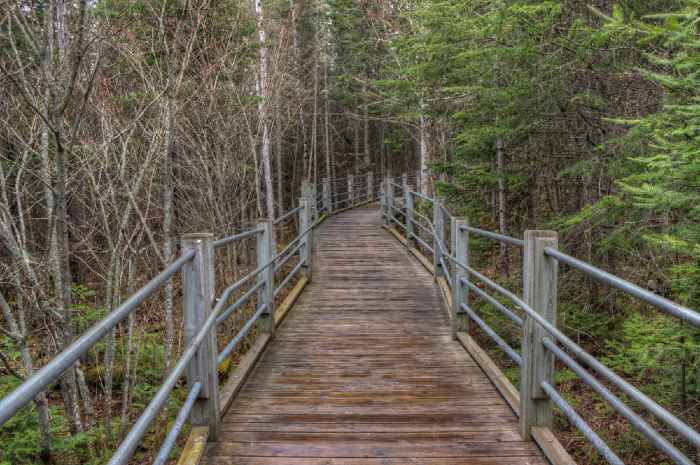 Wood and metal trail through the Grand Portage Indian Reservation