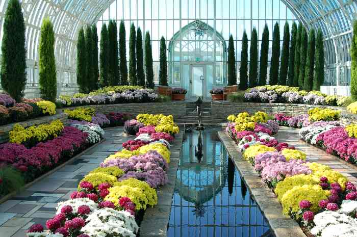 Marjorie McNeely Conservatory, in St. Paul, Minnesota, on of the best places to get married in Minnesota.